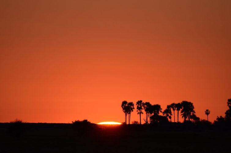 Botswana Desert and Pans Travel Guide, Sunset over the Pans in Botswana